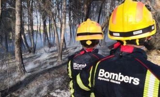 Cremen 4.800 m2 de pineda i terreny agrícola a Banyeres de Mariola